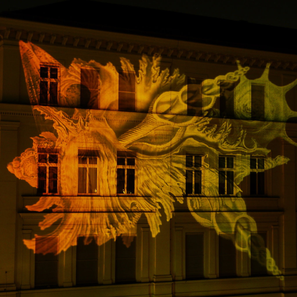 GUERILLA PROJECTION